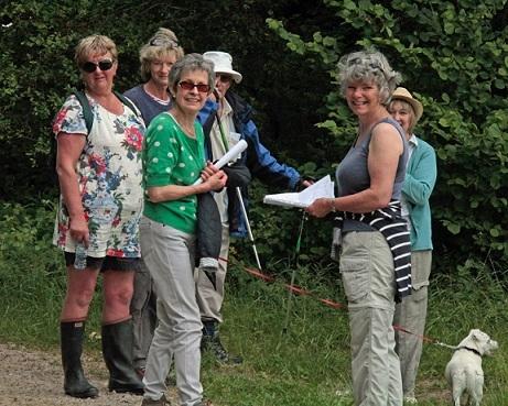 June Group walk