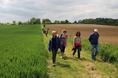 May's Group walk